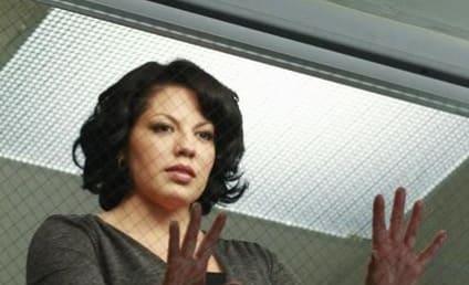Grey's Anatomy Caption Contest 255