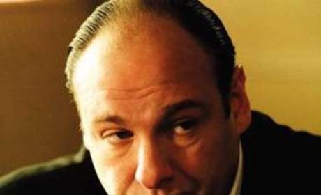 Tony Soprano Picture