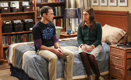 The Big Bang Theory Season 10 Episode 4 Review: The Cohabitation Experimentation