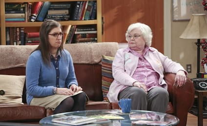 The Big Bang Theory Season 9 Episode 14 Review: The Meemaw Materialization