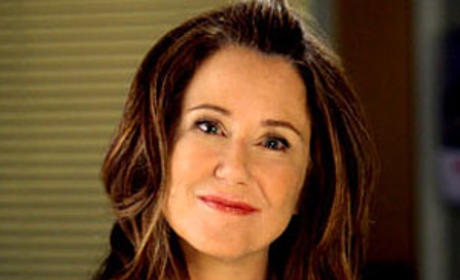Mary McDonnell Talks Grey's Anatomy