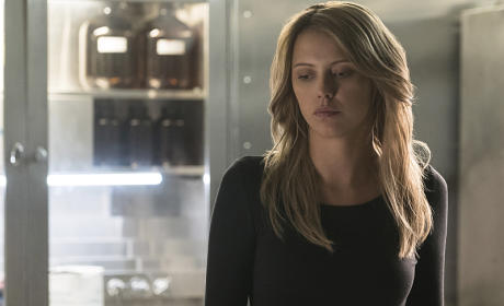 Riley Voelkel Talks The Originals, Freya and Family Above All!