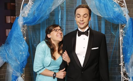 The Big Bang Theory Season 8 Episode 8 Review: The Prom Equivalency