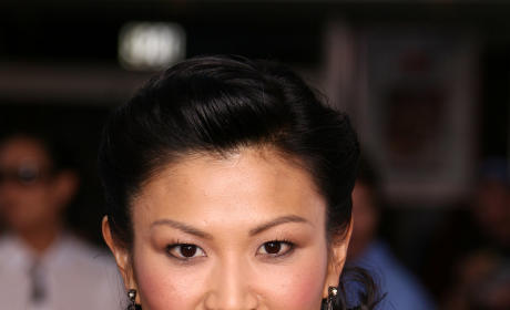 Michelle Krusiec Cast on Fringe