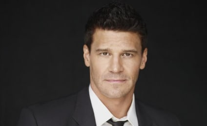 David Boreanaz Clarifies Stance on Bones' Booth & Brennan