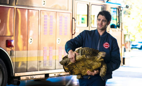Borrelli and the Tortoise - Chicago Fire