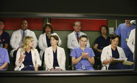 Watching From the Gallery - Grey's Anatomy Season 11 Episode 19
