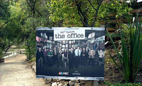 The Office Season Finale Spoilers: Holly's Return and More!