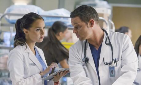 Grey's Anatomy Scoop: New Romances, New Doctors on the Way