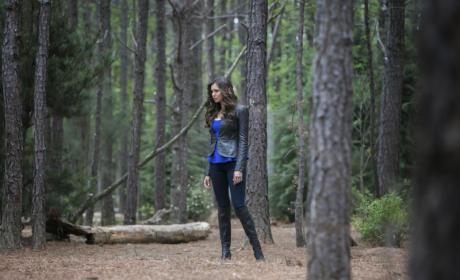 The Vampire Diaries Caption Contest 160