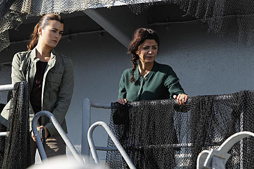Ziva and a Mother Figure