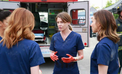 Grey's Anatomy Season 11 Episode 23 Review: Time Stops