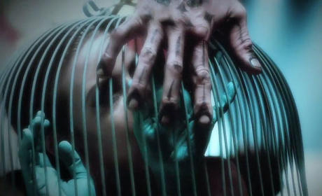 American Horror Story Freak Show Teaser: What's in the Cage?!?