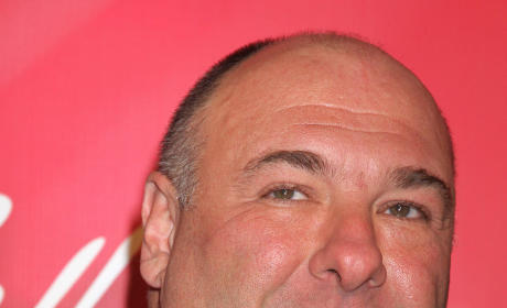 HBO Enlists James Gandolfini for Criminal Justice