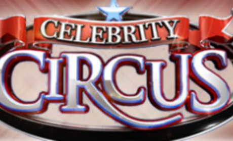 Injuries Abound on Celebrity Circus