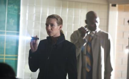 Fringe: Casting for Olivia's Stepfather