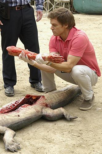 Arm in an Alligator