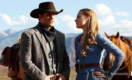 Westworld, Divorce and Insecure Score Premiere Dates on HBO