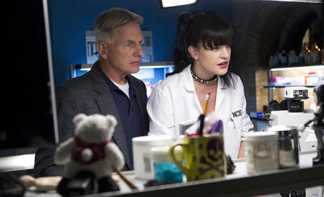 NCIS Season 12 Episode 7 Photo Gallery: Charitable Chicanery