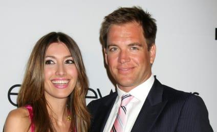 Michael Weatherly, Wife Welcome Baby Girl!