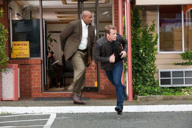 Run, Chance and Winston!