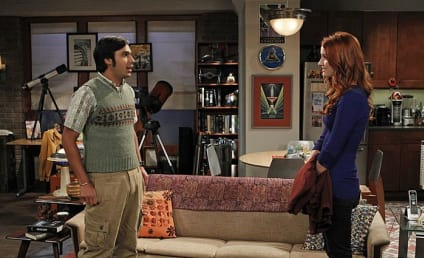 The Big Bang Theory: Watch Season 7 Episode 23 Online