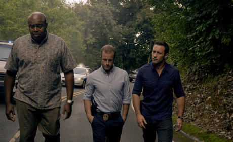 Hawaii Five-0 Trio Season 5 Episode 24