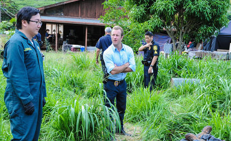 Hawaii Five-0 Season 5 Episode 12 Review: Not Forgotten