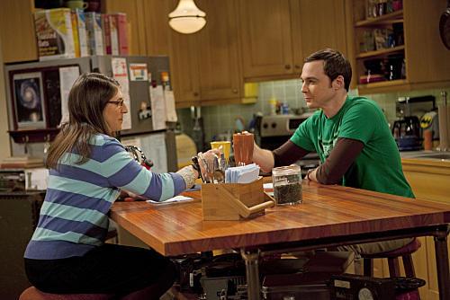 Sheldon and Amy Photo