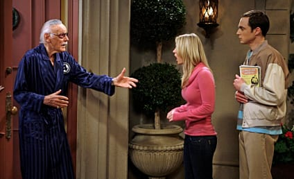 "The Big Bang Theory Review: ""The Excelsior Acquisition"""