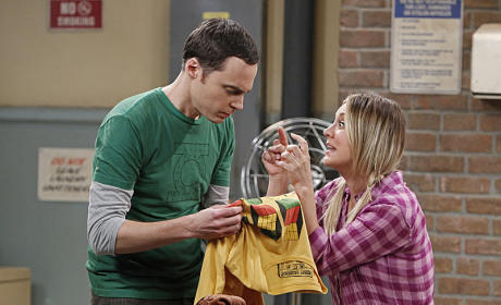The Big Bang Theory Review: The Odd Couples