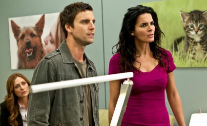 Exclusive Interview: Colin Egglesfield Previews Return to Rizzoli & Isles