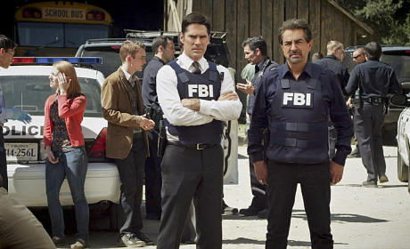 Criminal Minds Season 10 Episode 14 Review: Hero Worship