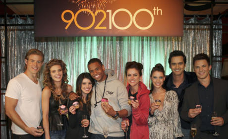 90210 Midseason Report Card: B