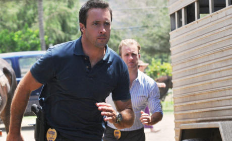 Hawaii Five-0 Review: Mommie Dearest and The Headless Horseman