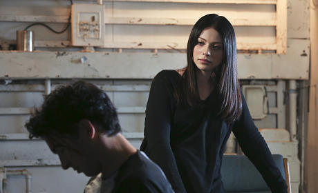 Michelle Trachtenberg to Guest Star on NCIS: Los Angeles