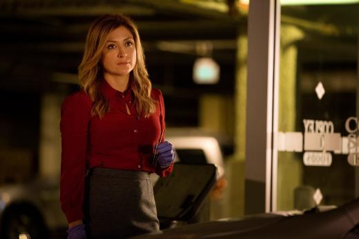"""Dr. Maura Isles in """"Food For Thought"""""""