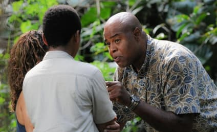 Watch Hawaii Five-0 Online: Season 6 Episode 19