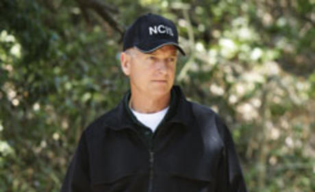 NCIS Spoilers: Gibbs in Love?!?