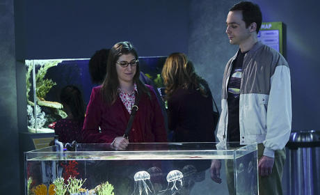 The Big Bang Theory Season 9 Episode 9 Review: The Platonic Permutation