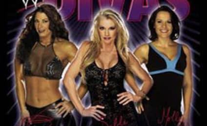 Coming to Wrestlemania 25: WWE Diva Battle Royal