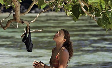 Jerri Searches The Trees