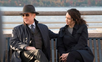 The Blacklist Season 3 Episode 9 Review: The Director