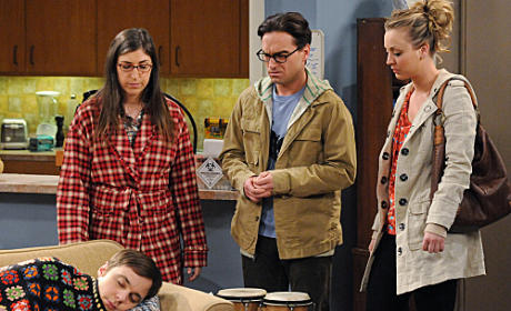 The Big Bang Theory Review: Call of the Wild Sheldon