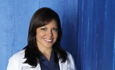 Sara Ramirez as Dr. Callie Torres