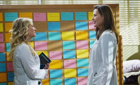 Arizona and Herman - Grey's Anatomy Season 11 Episode 13