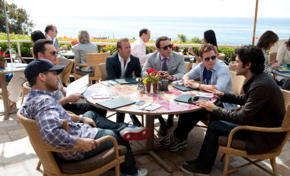 Entourage Season 8 Premiere Review: Up in Smoke...