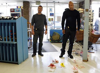 Watch NCIS: Los Angeles Season 2 Episode 17 Online