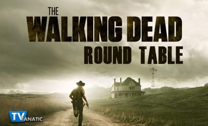 The Walking Dead Round Table: The Aftermath
