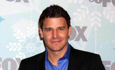 Boreanaz Photo